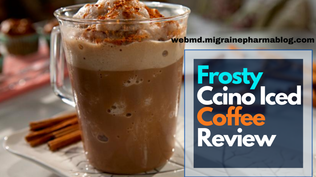 New Frosty Ccino Iced Coffee Review